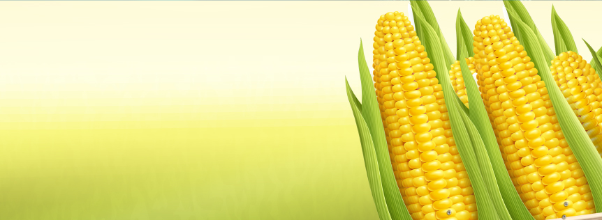 Corn and Invesco DB Agriculture Fund Pair Trade