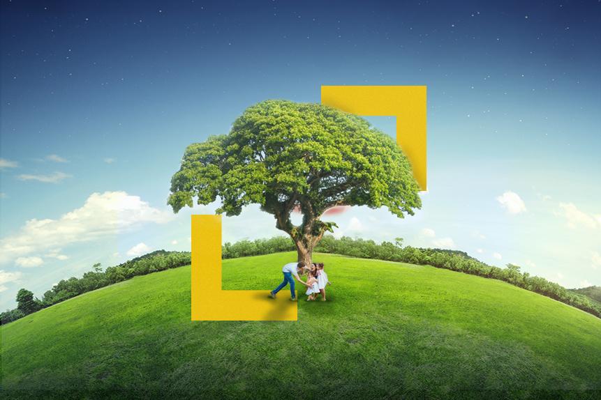 5 Stocks Seize Limelight on World Environmental Health Day