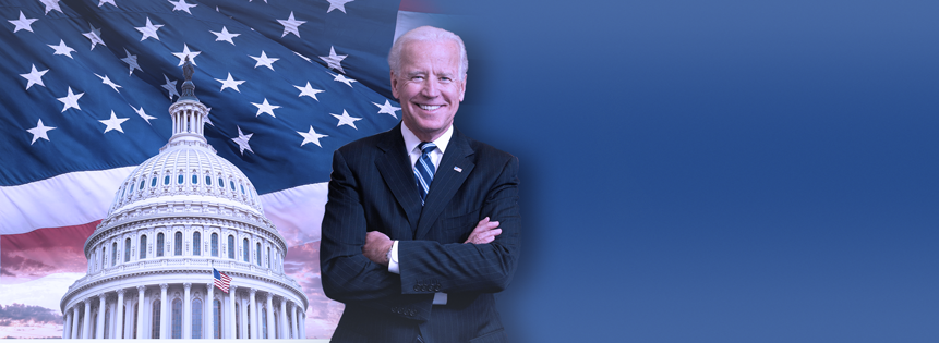 Stock Picks - Democratic Blue Wave   Biden Win