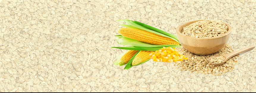 Oat/Corn Ratio Likely To Move Up