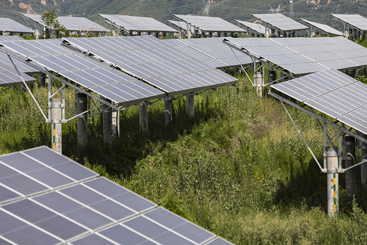 As First Solar's share price dims, is the light...